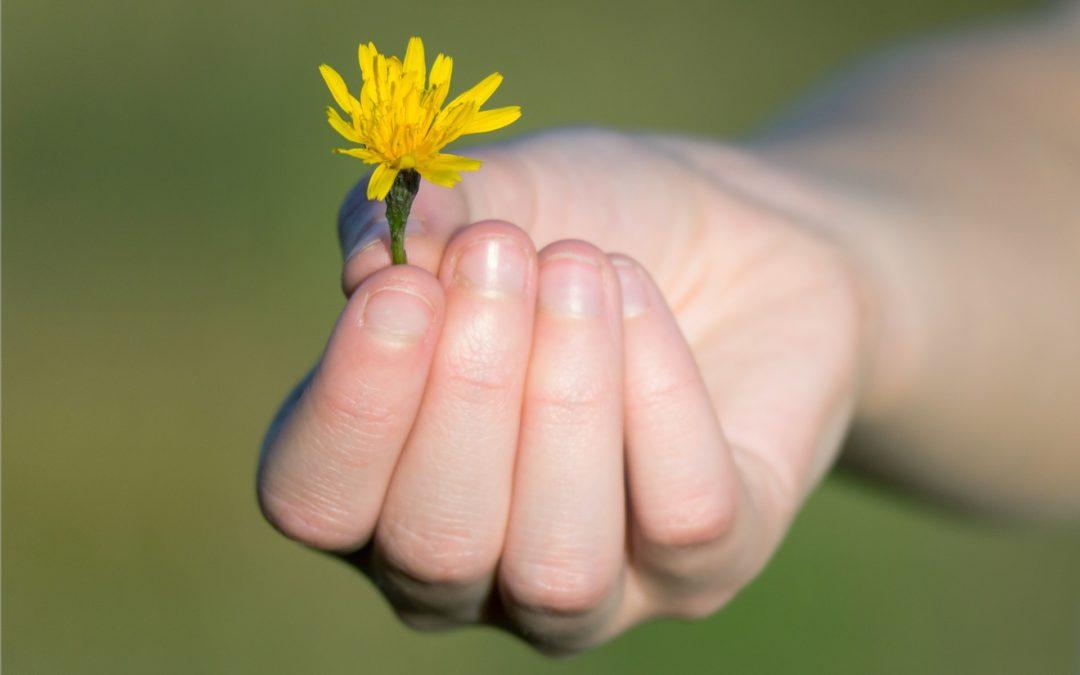 La gratitude : 5 conseils pour vivre plus heureux !